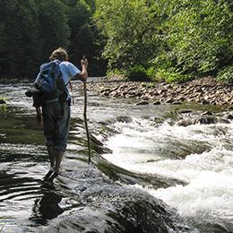 crossing-mineral-creek